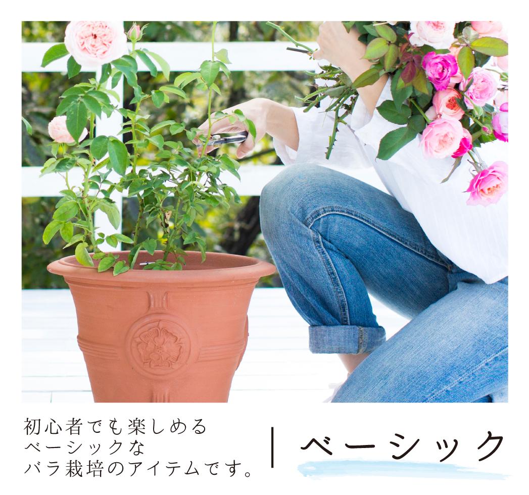 初心者でも楽しめるベーシックなバラ栽培のアイテムです