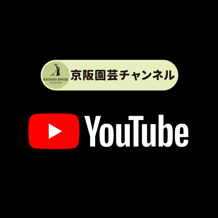 京阪園芸チャンネル