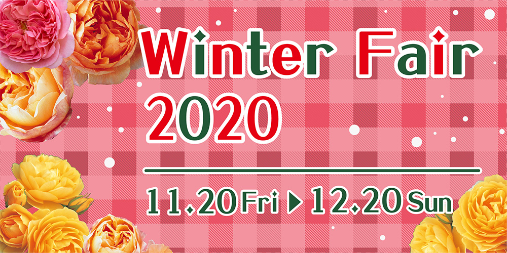 京阪園芸のウィンターフェア2020